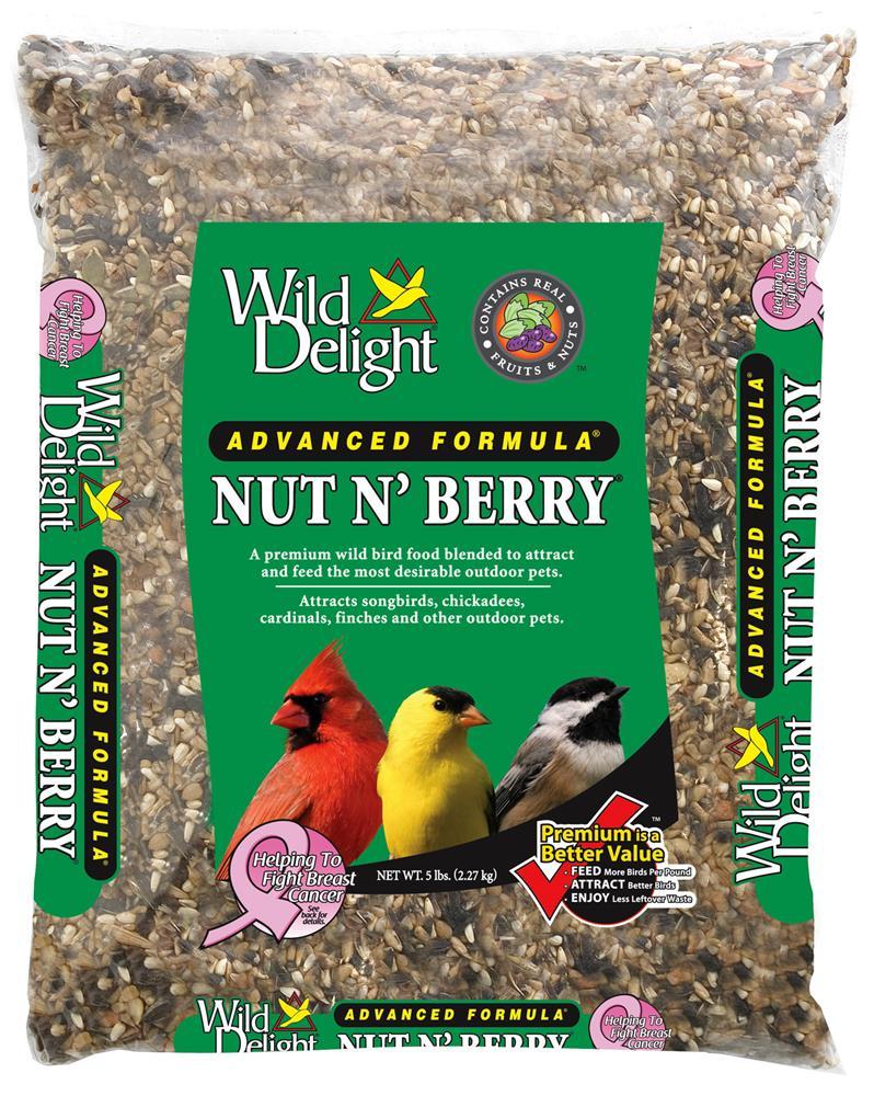 Los pájaros que comen baya acuden al centro del Wildflower | DiggingDigging