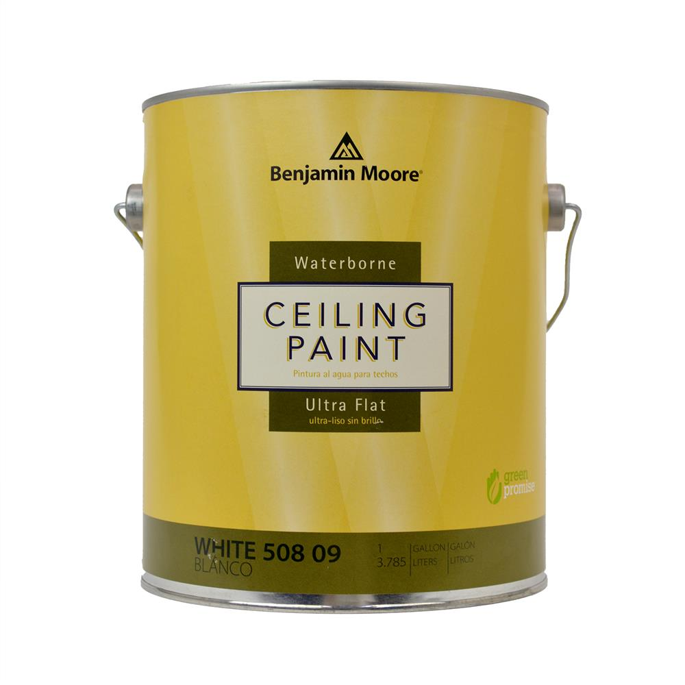 Benjamin Moore Waterborne Ultra Flat Ceiling Paint White