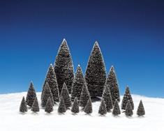 Pine Tree Set, Assorted Styles