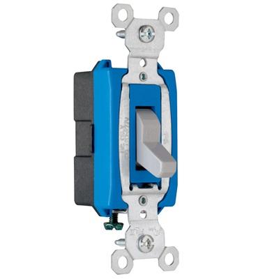 Pass & Seymour - 15 Amp Gray Single-Pole Toggle Switch